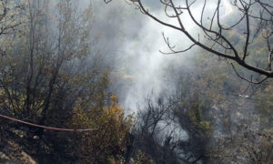 إخماد الحرائق في ريف اللاذقية - 25 تشرين الأول 2020 (سانا)