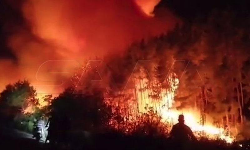 من الحرائق الأخيرة التي ضربت الغابات السورية تشرين الأول 2020 (سانا)
