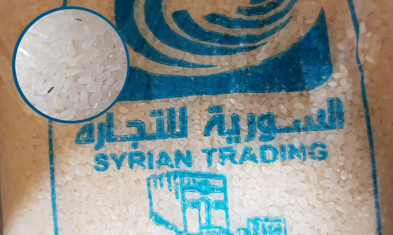 """أرز مليء بالحشرات توزعه مؤسسة """"السورية للتجارة"""" في حلب - تشرين الثاني 2020 (عنب بلدي)"""