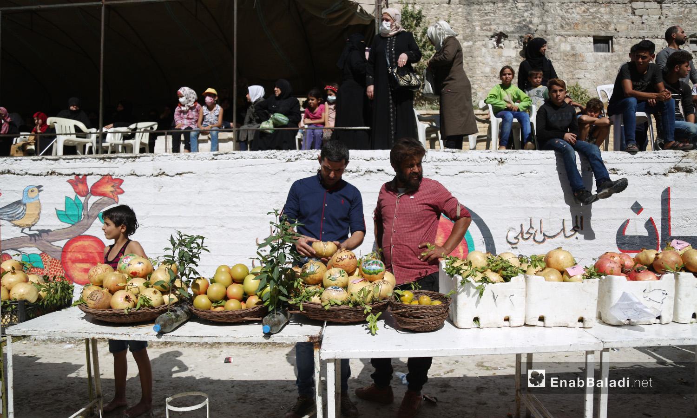 عرض المشاركون ثمارهم ضمن فعاليات مهرجان الرمان وتبارو على أفضل محصول في دركوش بريف إدلب الغربي  - تشرين الأول 2020 (عنب بلدي/ يوسف غريبي)
