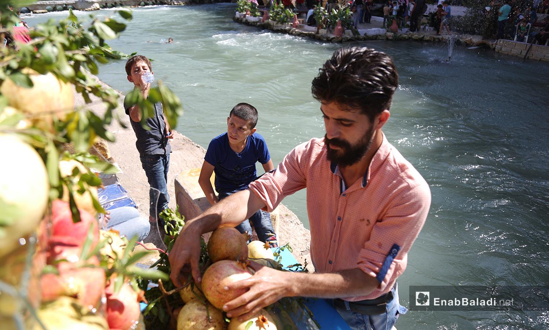 صف المشاركون حبات الرمان التي قدموها للزوار ضمن منافسة واحتفال بالمحصول من قبل المزارعين  - تشرين الأول 2020 (عنب بلدي/ يوسف غريبي)