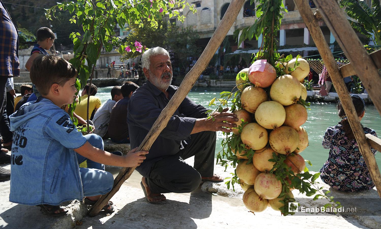عرض المزارعون ثمار الرمان على شكل عناقيد ضمن مهرجان الرمان الثالث في دركوش بريف إدلب الغربي  - تشرين الأول 2020 (عنب بلدي/ يوسف غريبي)