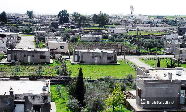 """تشتهر قرية """"الرفيد"""" بأشجارها الخضراء ومعالمها الأثرية -10 كانون الأول 2020 (عنب بلدي /محمد فهد)"""