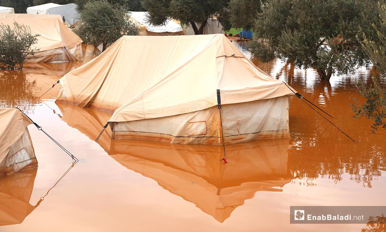 خيام غارقة بمياه الأمطار في مخيم حربنوش بريف إدلب - 19 كانون الثاني 2021 (عنب بلدي - يوسف غريبي)