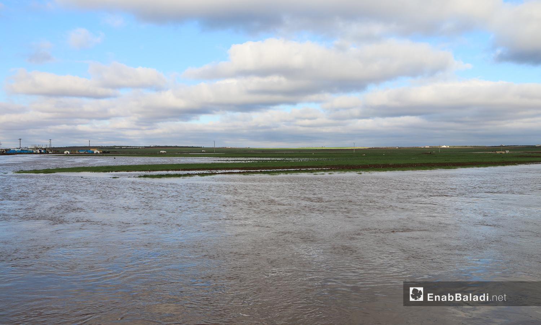 أراضي زراعية على طرفي نهر قويق مغمورة بالمياه بعد فيضان النهر في بلدة دابق بريف حلب الشمالي - 31 كانون الثاني 2021 (عنب بلدي - عبد السلام مجعان)