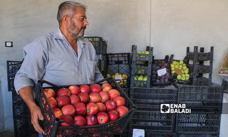 الخضراوات والفواكه الموسمية في قرية كفر عروق شمالي إدلب  - 29 تموز 2021 (عنب بلدي / إياد عبد الجواد)