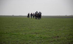 لاجئون يمشون عبر حقل في محاولة للوصول إلى حدود صربيا (رويترز)