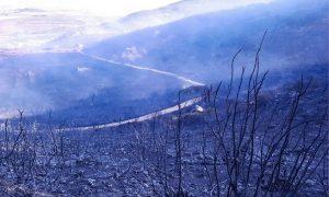 حريق في مصياف بريف حماة - 6 من آب 2021 (سانا)