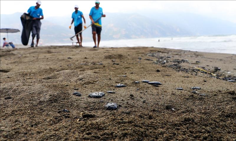 أعمال التنظيف على سواحل سامانداغ التركية - 10 أيلول 2021 (الأناضول)