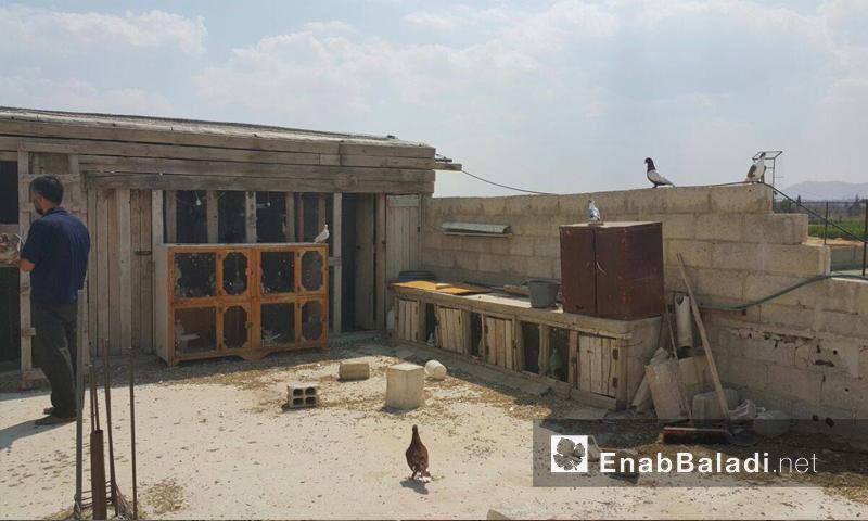 Syria-Damascus-Douma-EnabBaladi