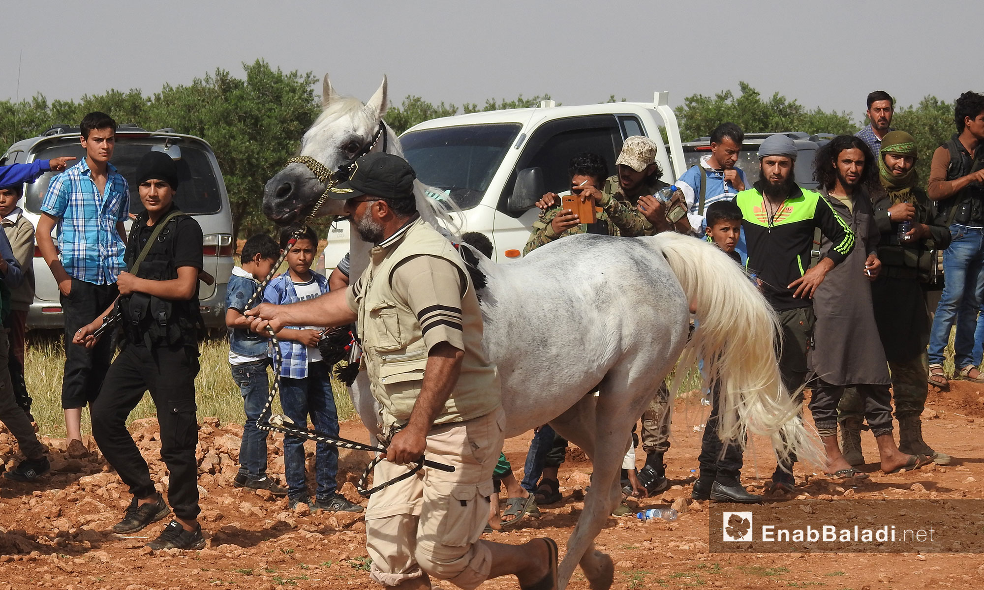 Olive Branch Festival for Arabian horses in the town of al-Nu