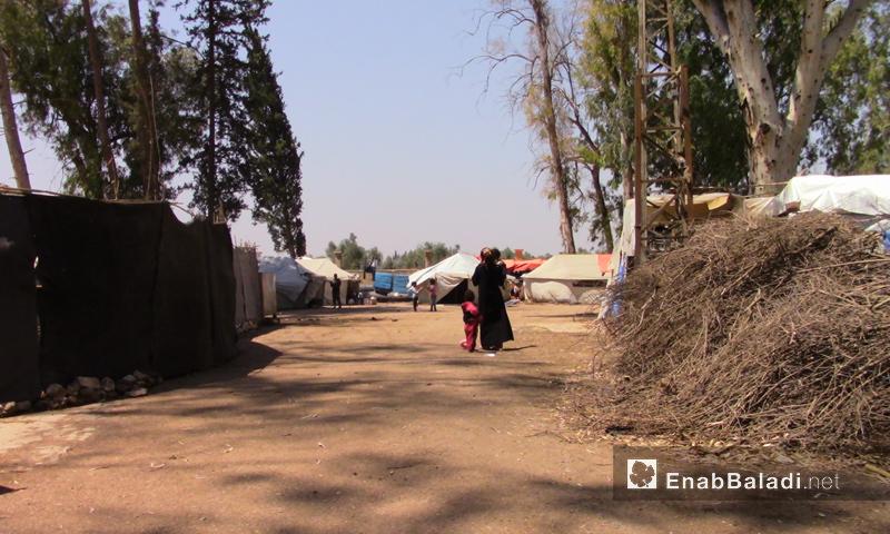 Al-Bahrah Camp near the town of Tell Shihab in Southern Syria (Enab Baladi)