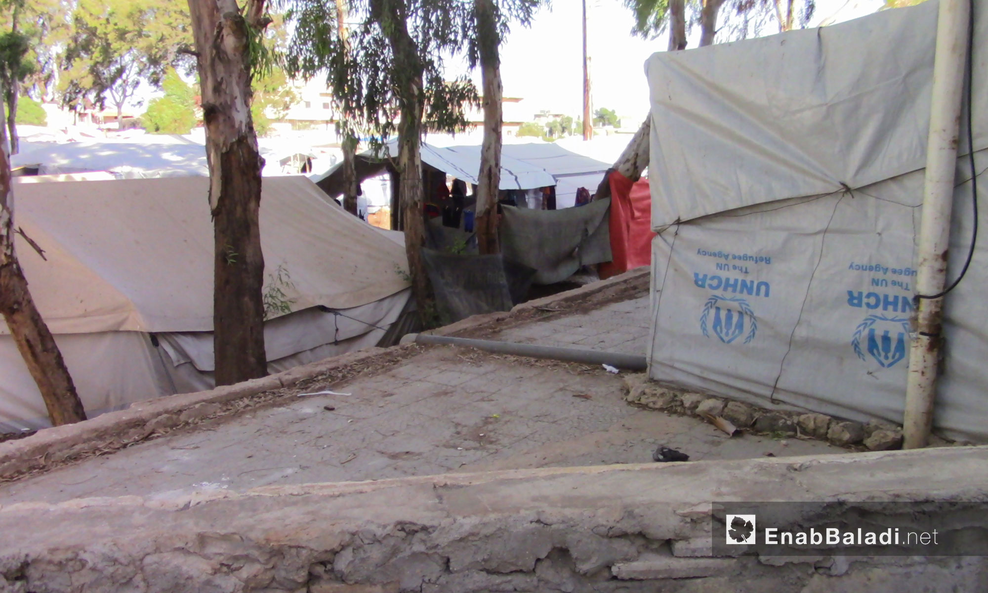 The camps of the people displaced from rural Daraa due to military escalation – June 26, 2018 (Enab Baladi)