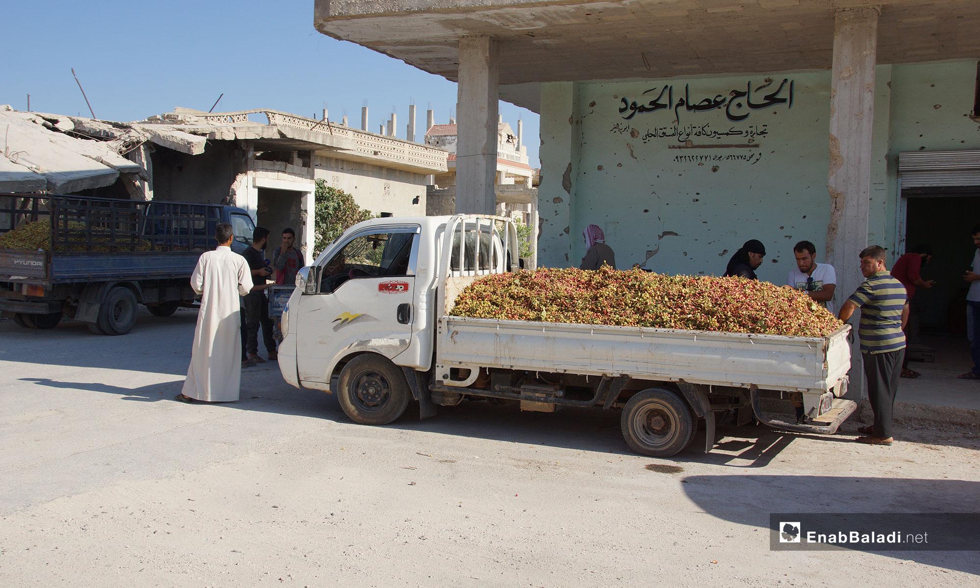 Pistachio market in the city of Murak, rural Hama- July 28, 2018 (Enab Baladi)
