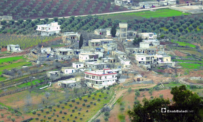 A village from the city of Afrin in the countryside of Aleppo - 2018 (Enab Baladi)