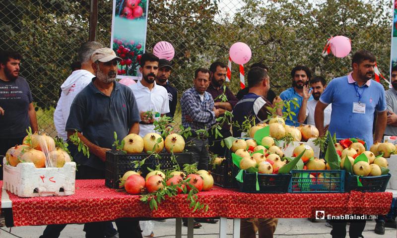 The Pomegranate Festival in Darkush, rural Idlib – October 11 (Enab Baladi)