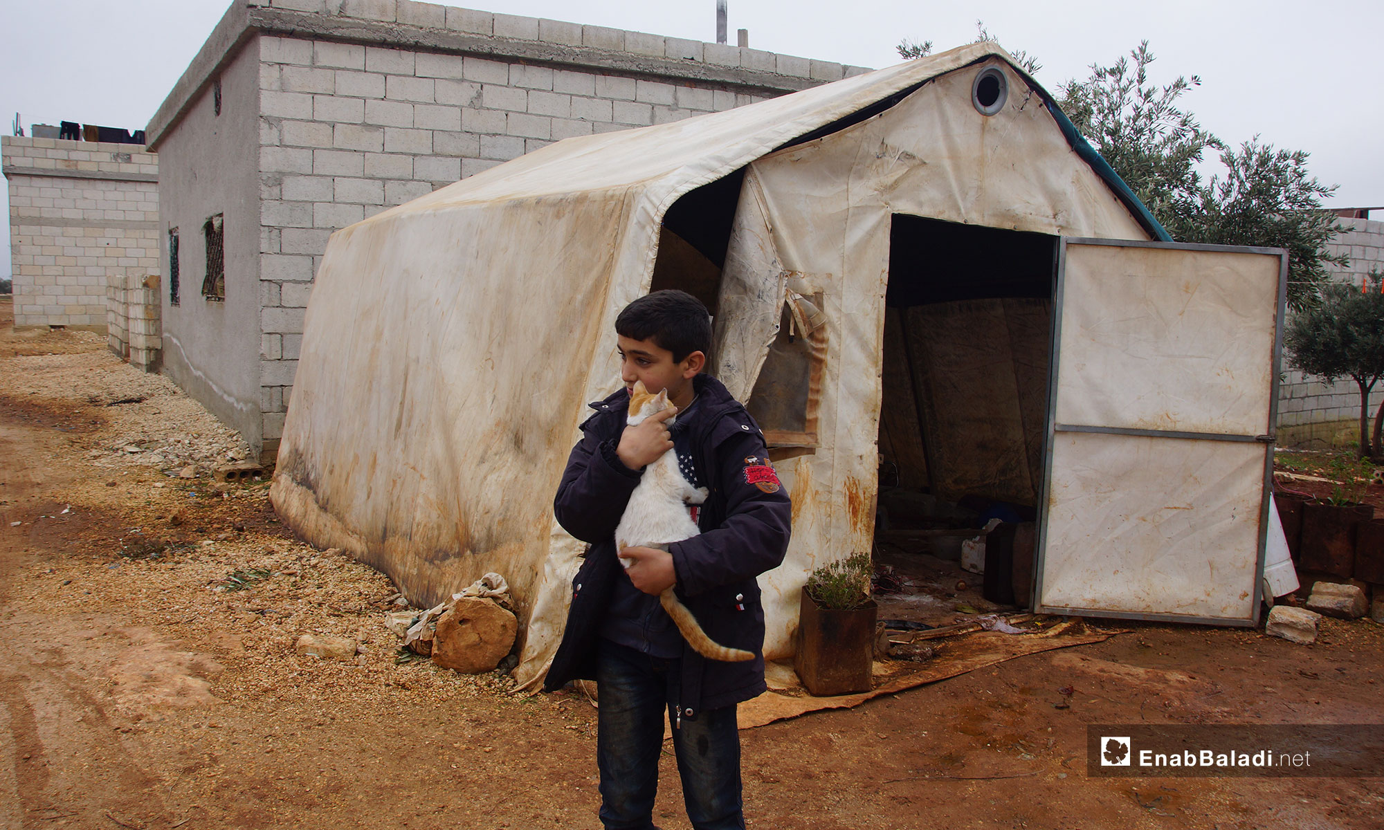 "A little boy holding a cat in the village of ""New Karnaz"" in rural Idlib – December 18, 2018 (Enab Baladi)"