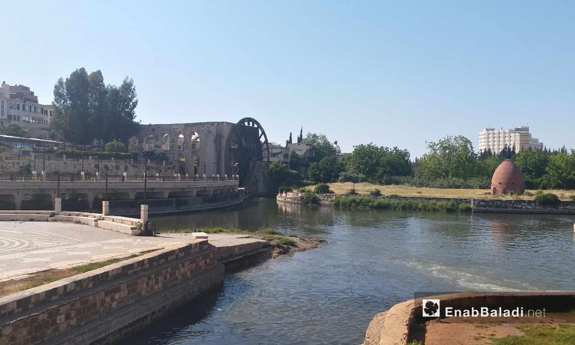 Norias of Hama on the Assi river – May 18, 2019 (Enab Baladi)