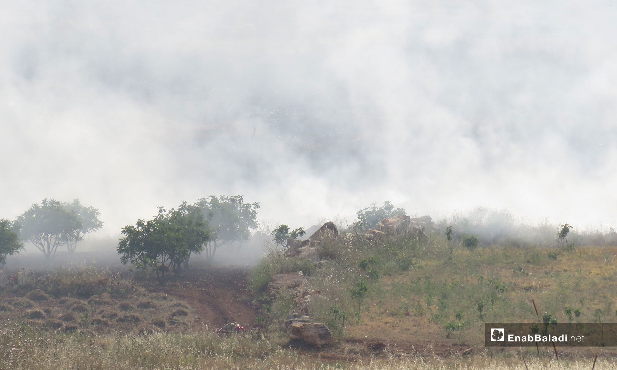 Crops caught fire in the town of Tramla, southern Idlib, after the area was targeted by rocket launchers – May 14, 2019 (Enab Baladi)