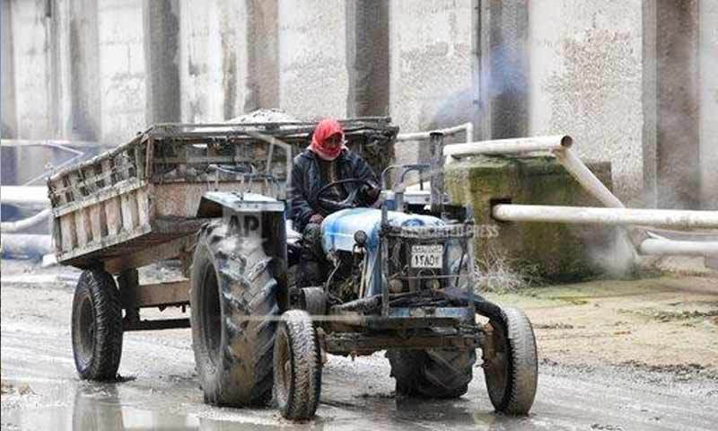An employee driving a tractor in a fertilizer factory outside the city of Homs - 13 January 2019 (AP)