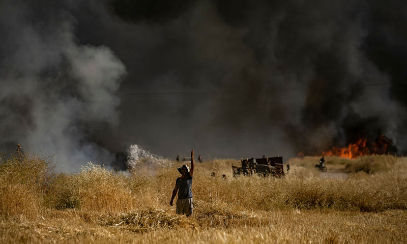 People extinguishing a fire in an agricultural field in the town of al-Qahtaniyah, in al-Hasakah countryside - June 10, 2019 (AFP)