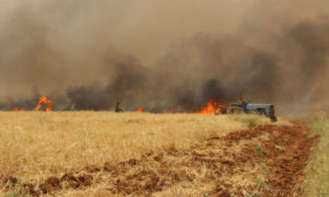 Fire devours agricultural lands in Idlib as a result of shelling by Assad forces - May 2019 (Syrian Civil Defense)