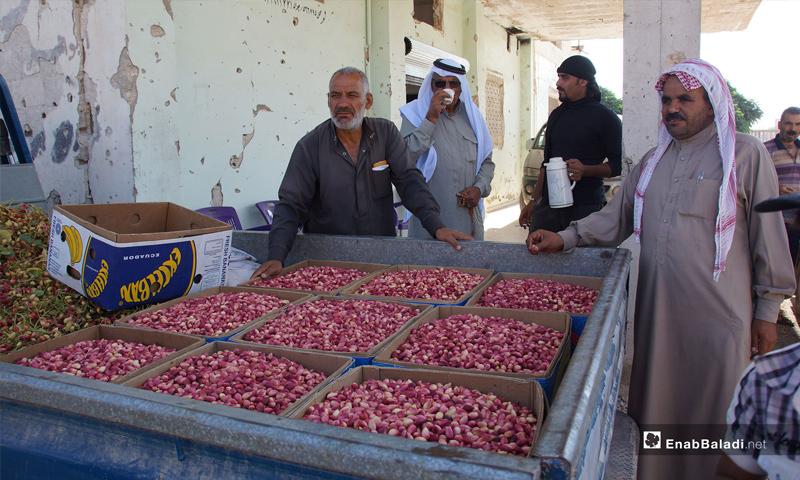 The pistachio market in the city of Morek in rural Hama - July 28, 2018 (Enab Baladi)