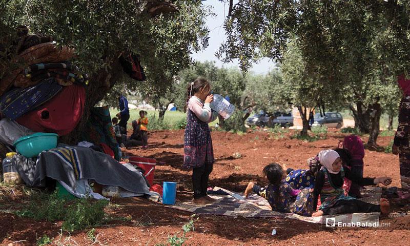 IDPs in the town of Atmeh at the Syrian-Turkish border strip - May 4, 2019 (Enab Baladi)