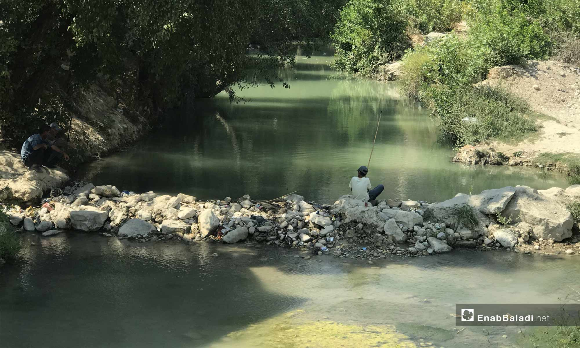 A young man fishing in the Assi River, near the city of Darkoush, western rural Idlib -September 8, 2019 (Enab Baladi)
