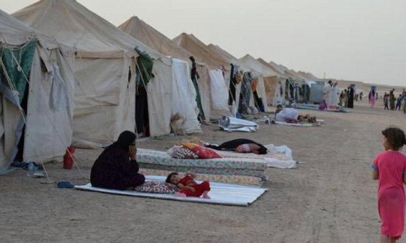 IDPs of al-Rukban camp, August 2019 (Alaraby)