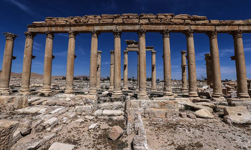 Site of Palmyra (TASS)