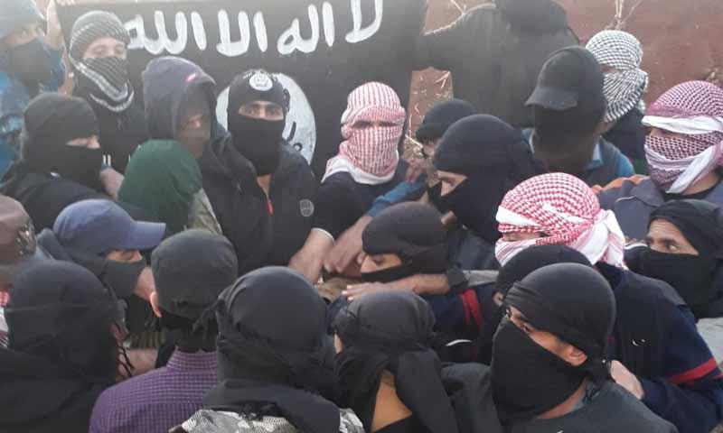 ISIS operatives pledge allegiance to their new leader Abu Ibrahim al-Hashemi - 5 November 2019 (Nasher news telegram channel)
