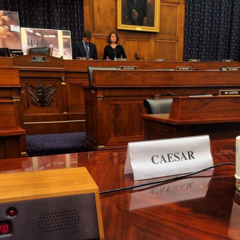 Paper bearing the name of Caesar in the United States Congress - 2014 (Mouaz Moustafa's Twitter account)