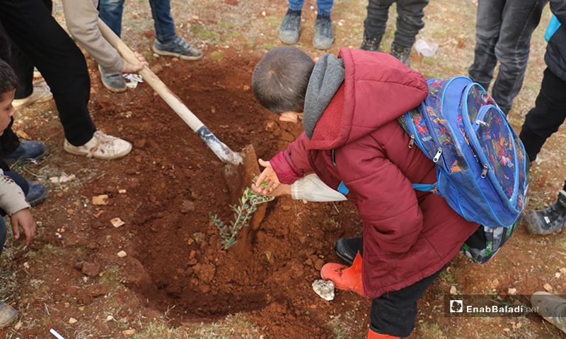 Children of Idlib conducting tree of liberty campaign
