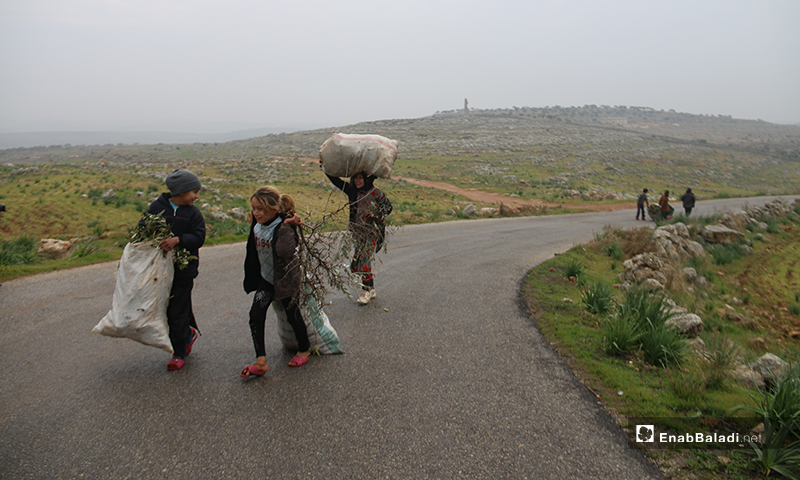 Children pulling bags loaded with firewood for heating near the ruins of Deir Amman in the western countryside of Aleppo - 19 January 2020 (Enab Baladi)