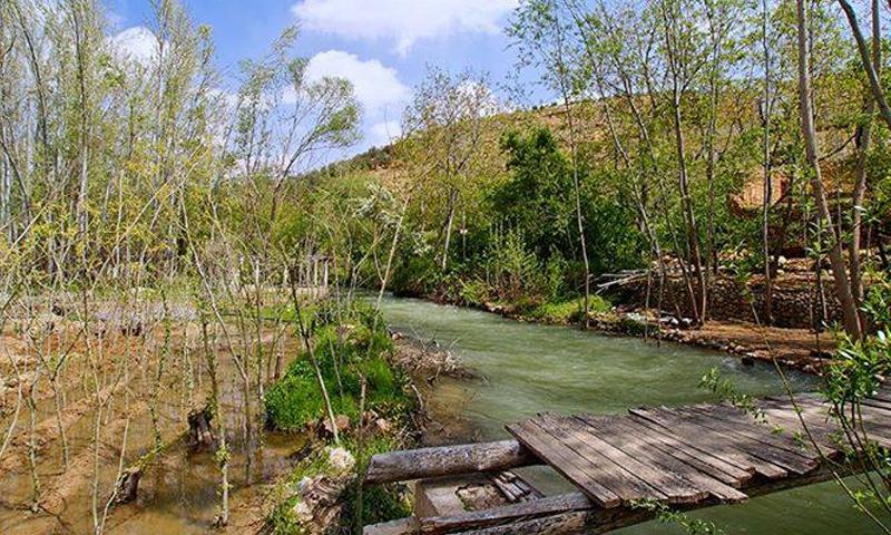Barada River runs through the town of Ashrafiyat al-Wadi in Wadi Barada area of Rif Dimashq (Ashrafiyat al-Wadi Archives)