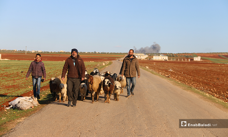 Displaced people trying to escape on foot the airstikes on the western parts of Aleppo (Enab Baladi)