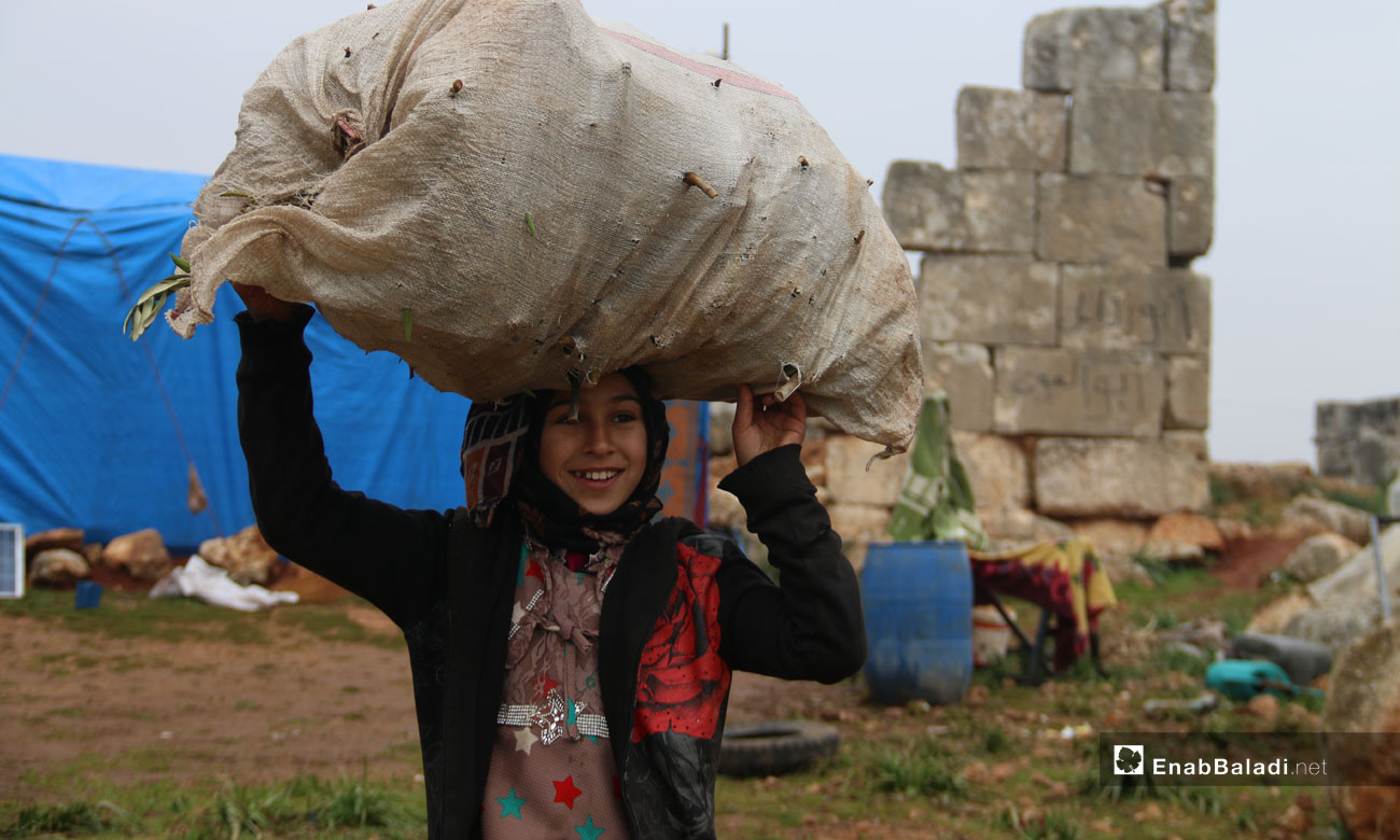 A displaced girl holds a bag of wooden sticks in an archaeological area of Deir Numan in the western countryside of Aleppo - 23 December 2020 (Enab Baladi)