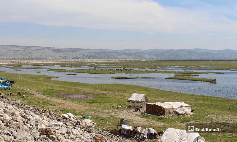 IDPs camps in al-Rouge Plain of rural Idlib – 16 April 2020 (Enab Baladi)