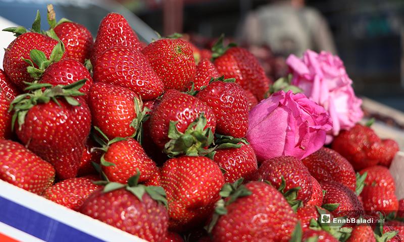 A street cart for Strawberries in Ramadan in al-Bab city of rural Aleppo – 25 April 2020 (Enab Baladi)