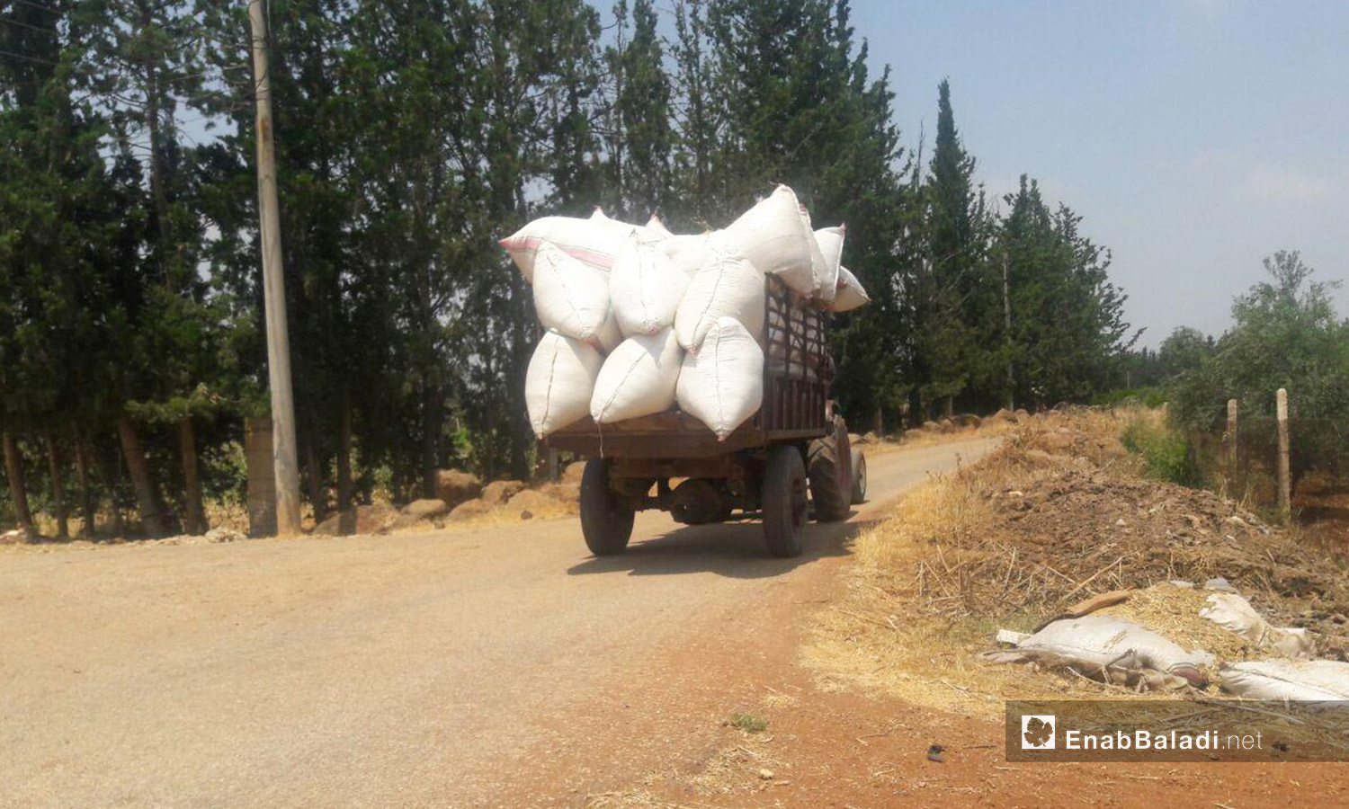 A tractor transferring the harvested wheat put into grain bags in western Daraa countryside – 05 July 2020 (Enab Baladi / Halim Mohammed)
