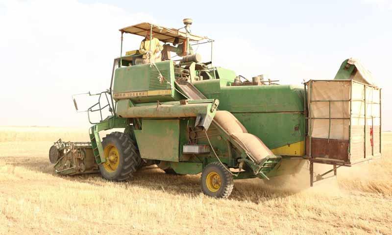 Wheat harvest in al-Hasakeh Governorate - 2019 (arta.fm)
