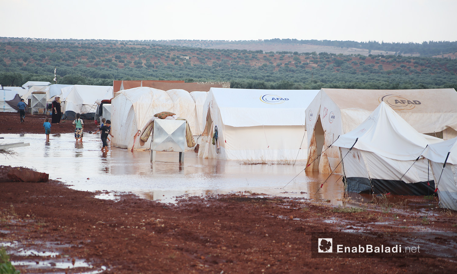 A rainstorm hits northern Syria camps in Kafr Buni in the northern countryside of Idlib - 19 June 2020 (Enab Baladi / Youssef Ghribi)