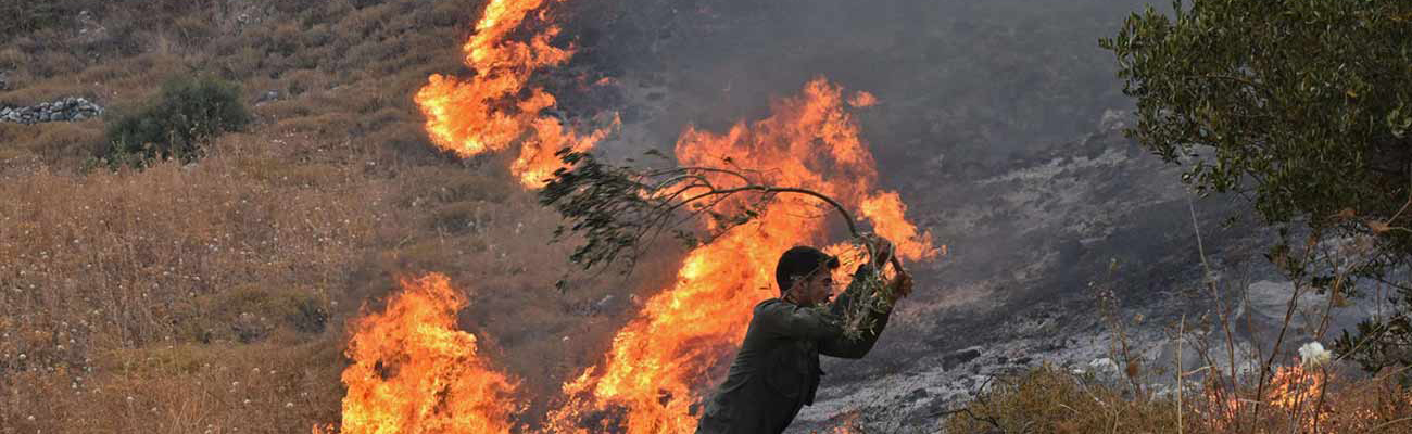 A man trying to put the fire out using a tree branch in the western countryside of Hama - 8 September, 2020 (AFP)