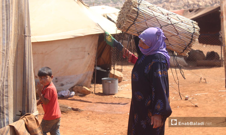 A displaced Syrian woman carrying al-Zal cane sticks in Kafr Lusin in Idlib countryside - 28 August 2020 (Enab Baladi / Iyad Abdel Jawad)