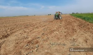 Tractor plowing a piece of land in the northern countryside of Raqqa (Enab Baladi)