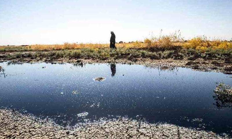 Aman waking along a water way polluted by an oil spill near the village of al-Sqairiyah in the countryside of Rmelan in al-Hasakah governorate, in northeastern Syria (Dalil Slaiman/ AFP)