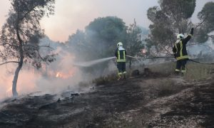 Civil Defense teams putting out a fire that hit northwestern Syria - 27 May 2021 (Syrian Civil Defense)