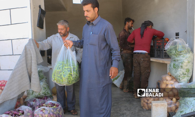 Seasonal vegetables and fruits in the village of Kafr Aruq, north of Idlib - 29 July 2021 (Enab Baladi – Iyad Abdul Jawad)