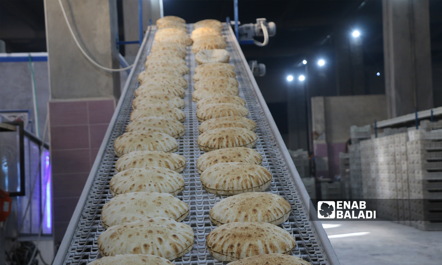 The bakery's fourth new production line established by the local council in al-Bab city - 8 October 2021 (Enab Baladi - Siraj Mohammed)